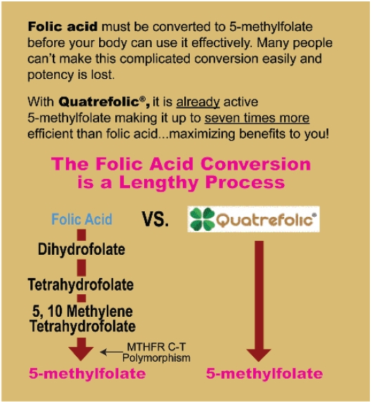 Whole Foods Methylfolate