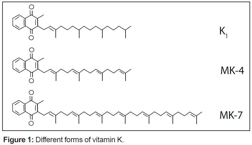 new discoveries about the role of vitamin k in health