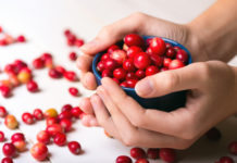 cranberries probiotics