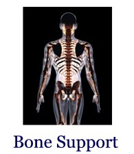 Bone Support, Steve Lankford, HealthQuestPodcast