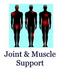 Joint Muscle Support, Steve Lankford, HealthQuestPodcast