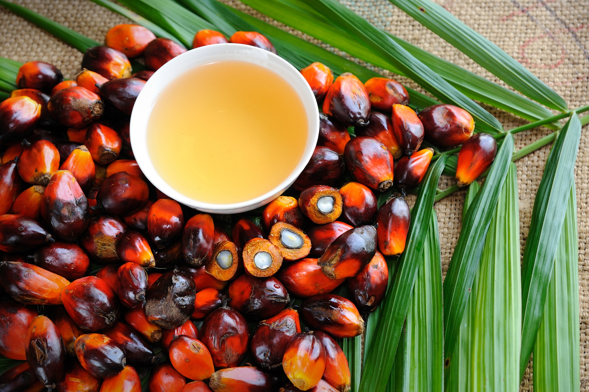 Whole Foods Palm Kernel Oil