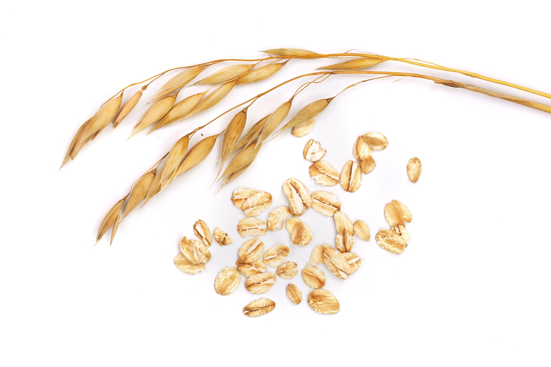 The Gluten Dilemma for Food Manufacturers | Whole Foods Magazine