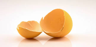 Empty egg shells after the chicken has hatched and left, isolated on a white background