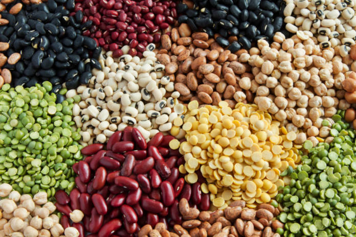 Various Legumes, colorful beans top view